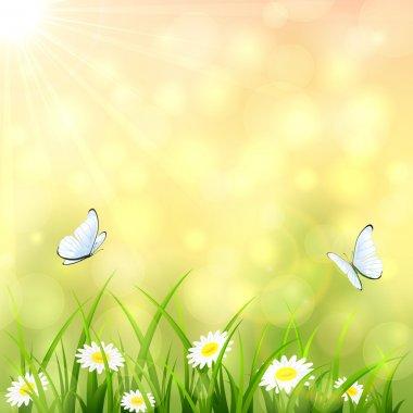 Sunny summer background