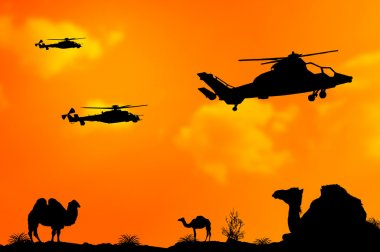 Helicopters or choppers silhouette on desert sunset background
