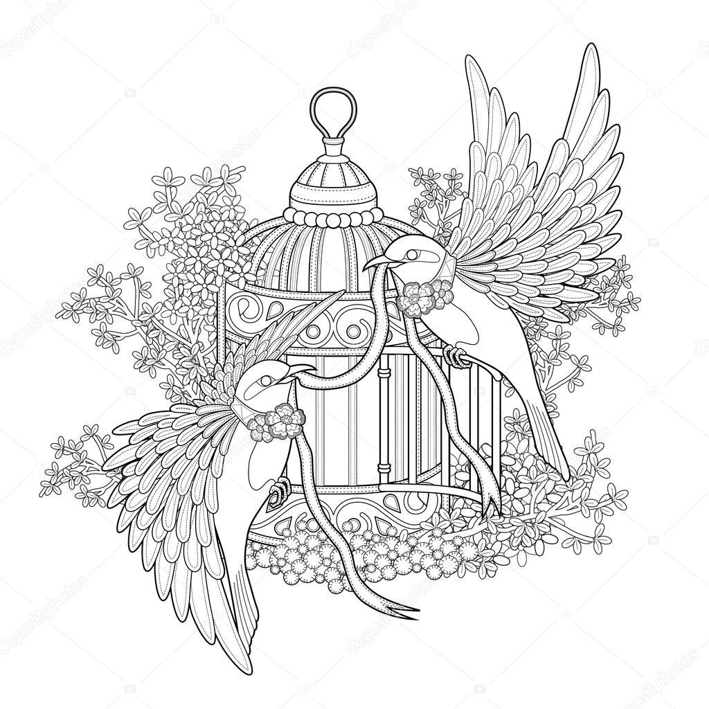 Zarif Kuş Boyama Sayfası Stok Vektör Kchungtw 82668968
