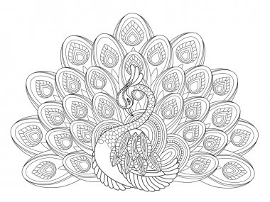 Elegant peacock coloring page in exquisite style stock vector