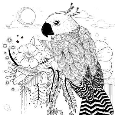 lovely parrot