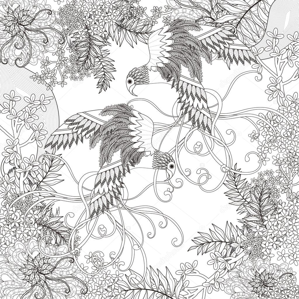 hermoso vuelo página para colorear de aves — Archivo Imágenes ...