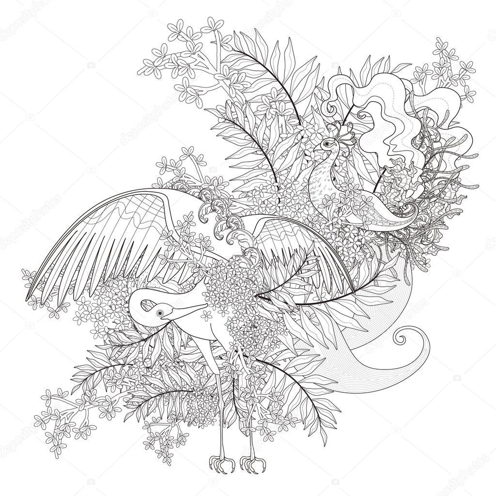 Güzel Uçan Kuş Boyama Sayfası Stok Vektör Kchungtw 95581480