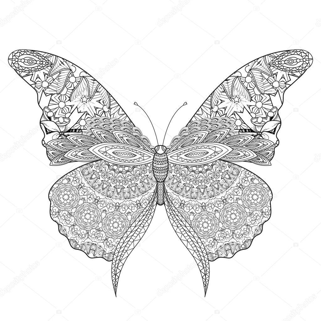 Piękny Motyl Kolorowanki Grafika Wektorowa 169 Kchungtw