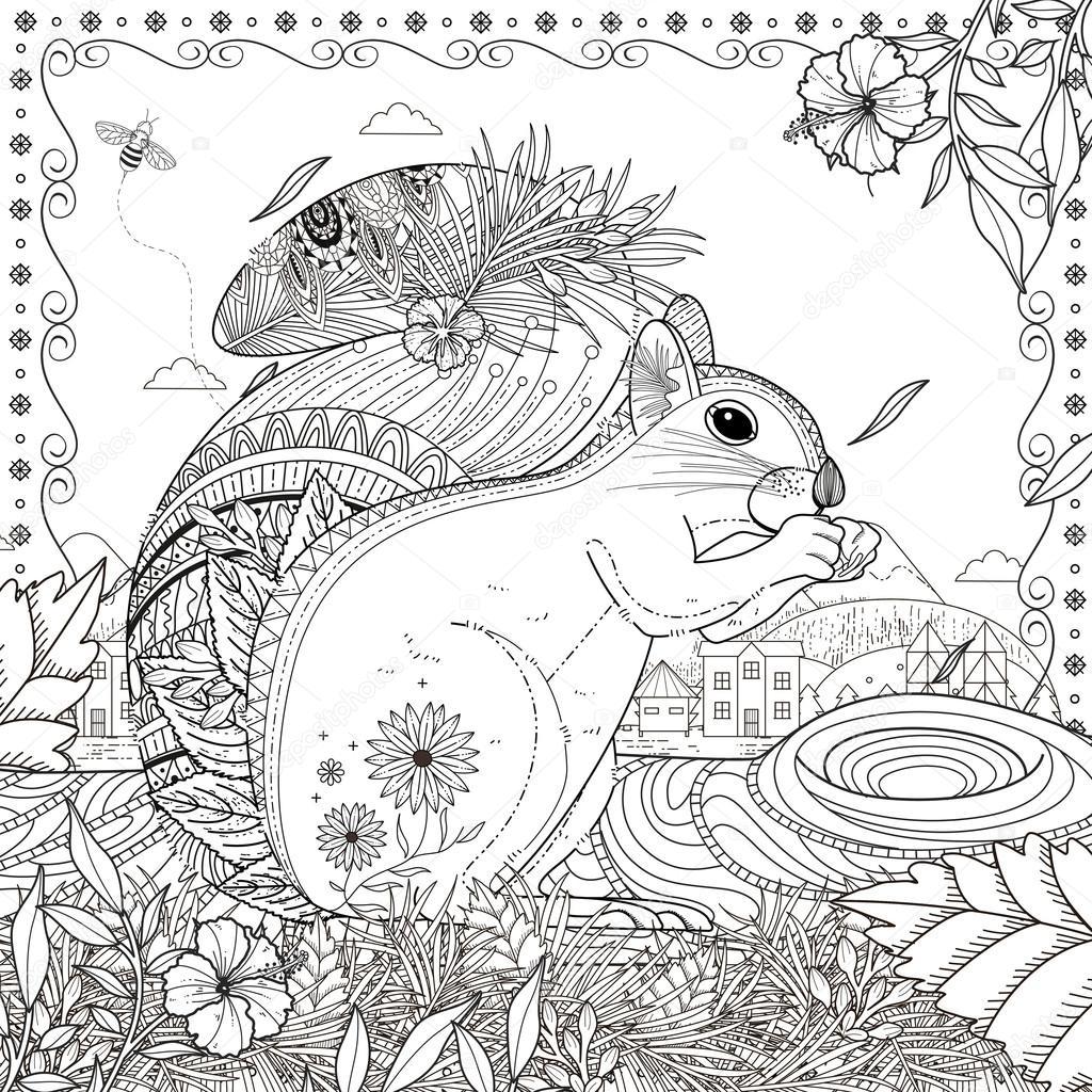 Kleurplaten Voor Volwassenen Eekhoorn Archidev