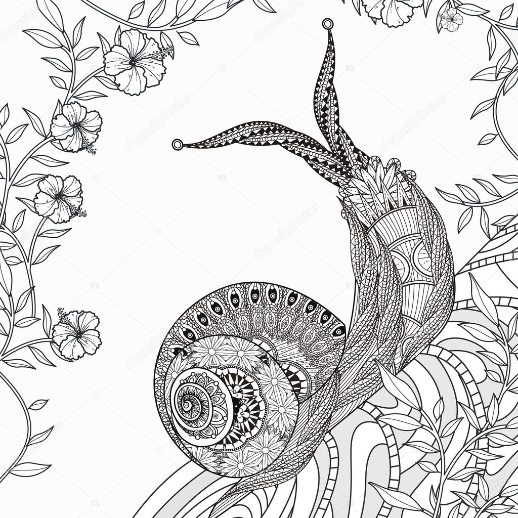 elegant snail coloring page stock vector - Snail Coloring Page
