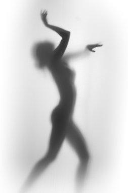 """Картина, постер, плакат, фотообои """"силуэт красивой и сексуальной танцовщицы """", артикул 71217855"""
