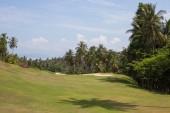 Krásné golfové hřiště a Palmou. Ostrov Koh Samui, Thajsko