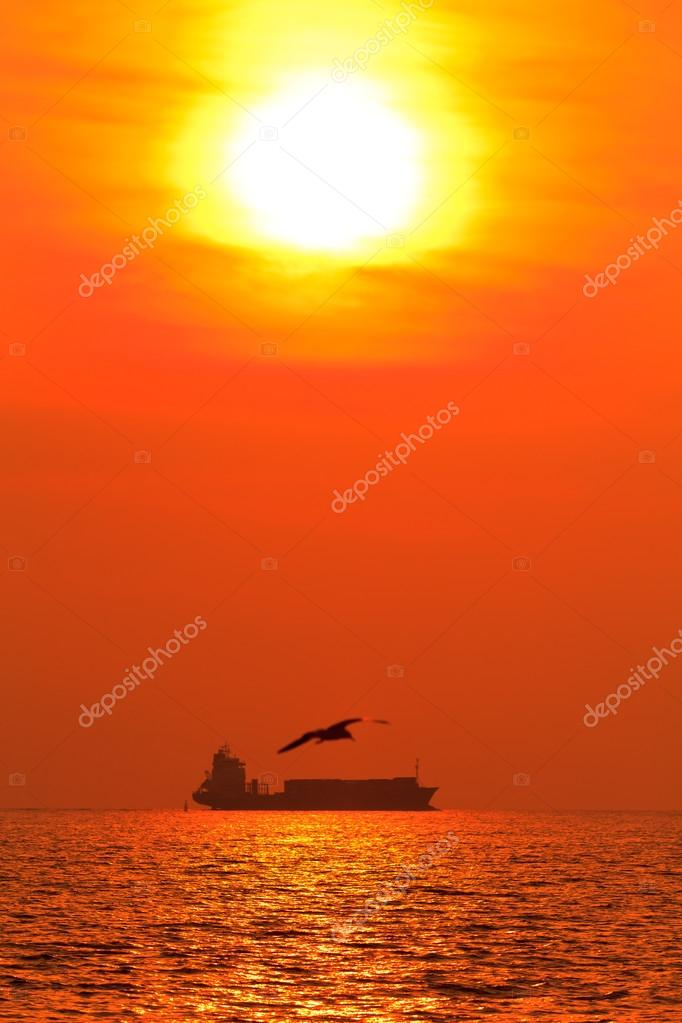 Sunset at sea with seagull