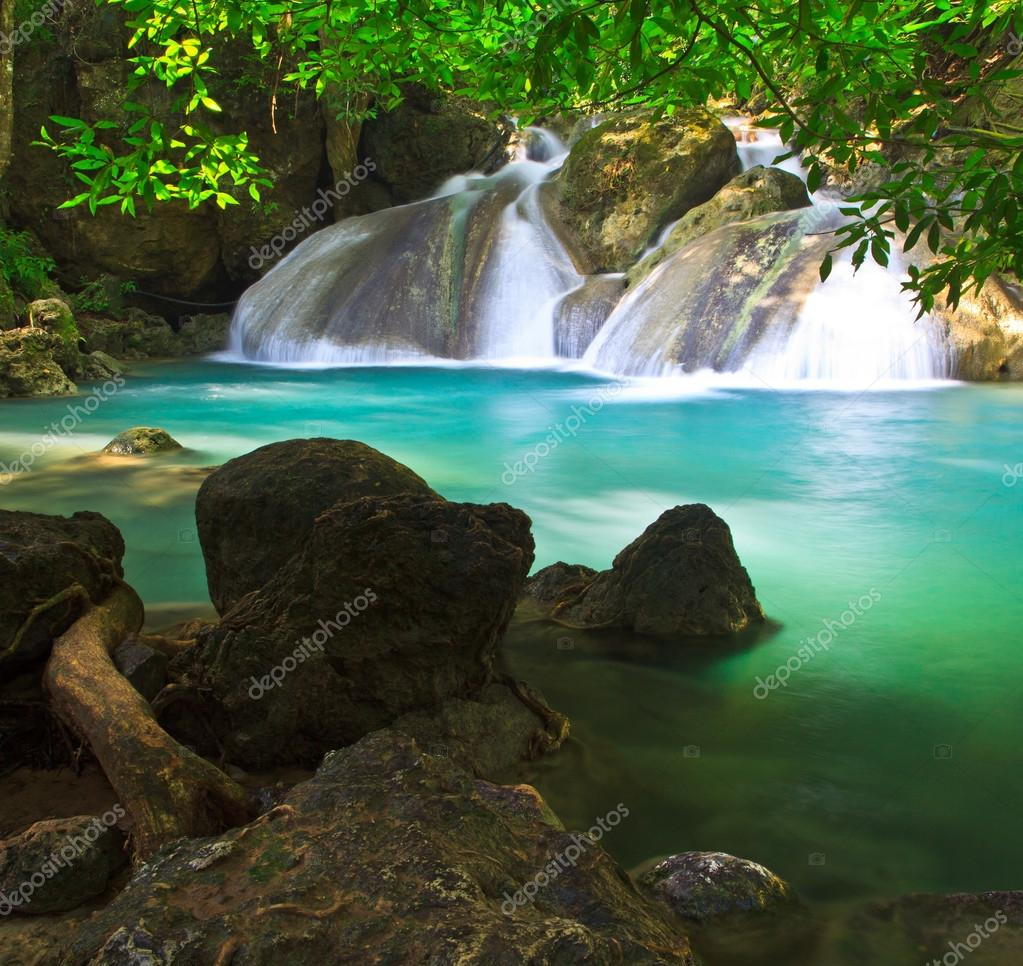 Waterfall and stream in forest