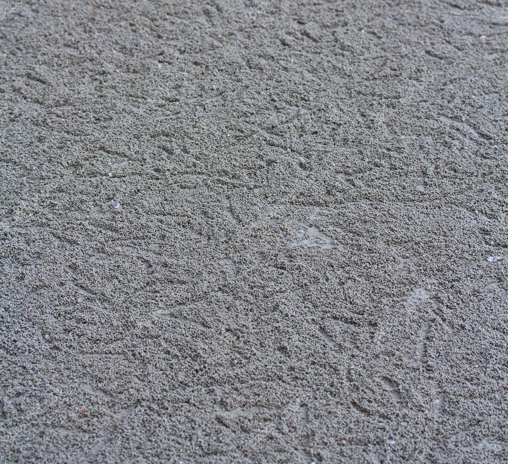 Crab making sand balls