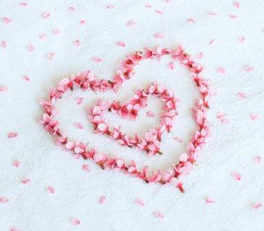 Sakura or cherry blossoms in the shape of heart