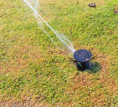 Sprinkler system in a farm field grass