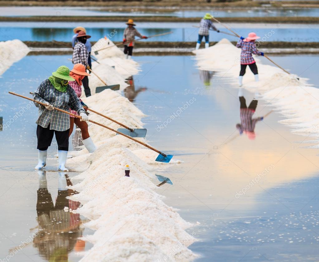 Salt fields in Thailand