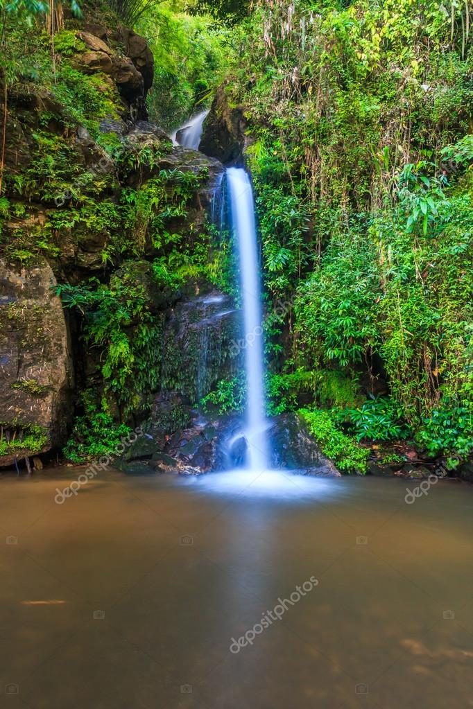 Forest waterfall at Chiang Mai
