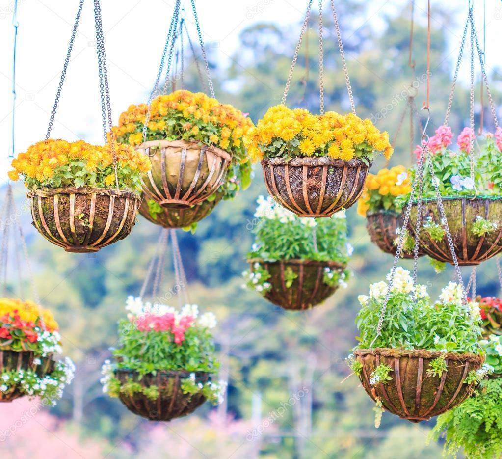 Beautiful Baskets Of Flowers Stock Photo Deerphoto 93018424