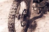 Fotografia ruota anteriore bici