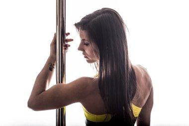 Beautiful young woman posing at pole