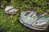 Popelnici s zarostlé shnilé klasické automobily Citroen Ds