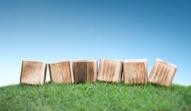 Wooden blocks on a green grass