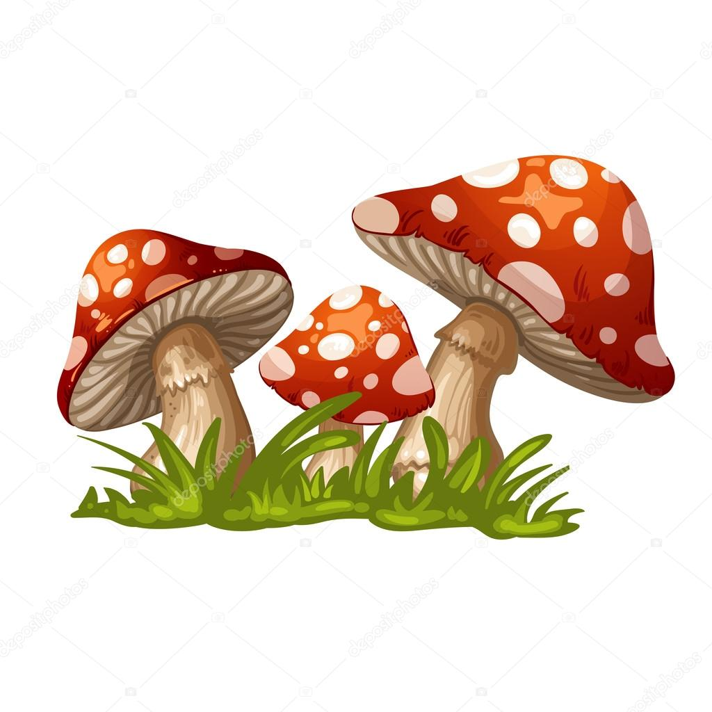 Illustration of a red mushroom in the grass