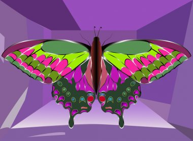 Low poly butterfly icon