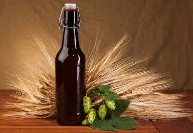 beer bottle and spikes of barley