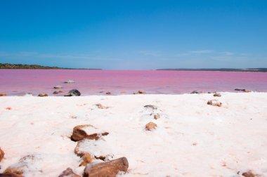 Pink Lake Panorama Australia
