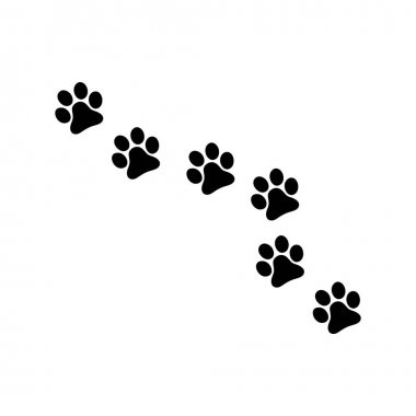 Pet track icon or logo isolated sign symbol vector illustration - high quality black style vector icons icon
