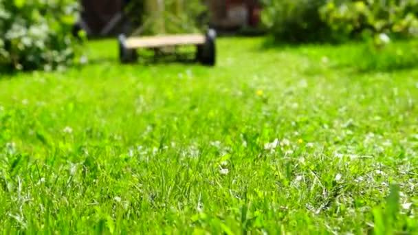 Zahradník seká trávník s lawnmover