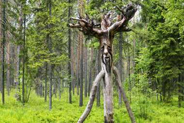 Wooden russian spirit of the wild forest