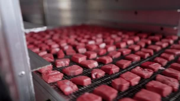 Production of dog food. Drying meat. Drying meat in an oven in a butchers shop. The sliced meat is dried in a special dryer.
