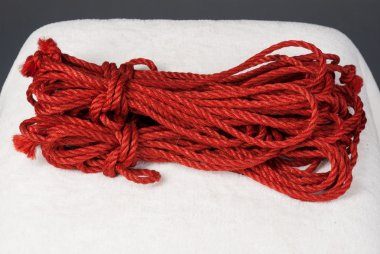 red ropes for shibari