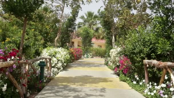 Krásné barevné park s rozkvetlé aleje