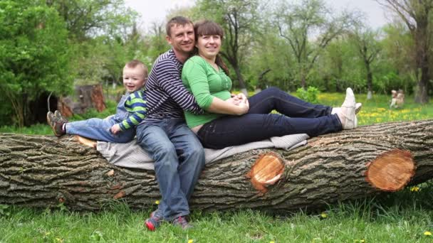 young family sitting on a tree