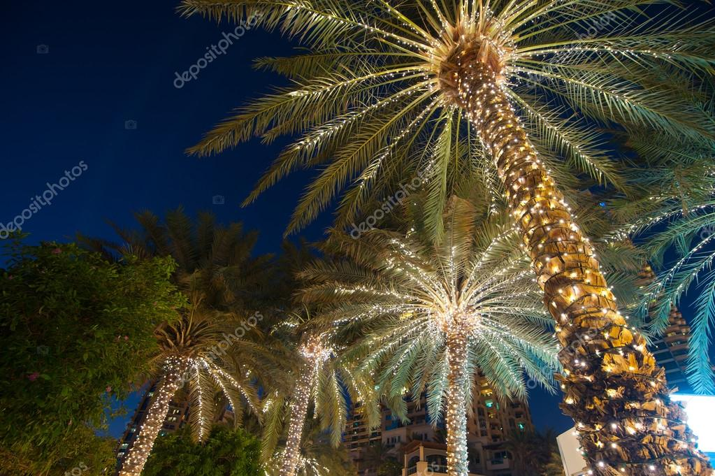 christmas decoration background palm tree stock photo
