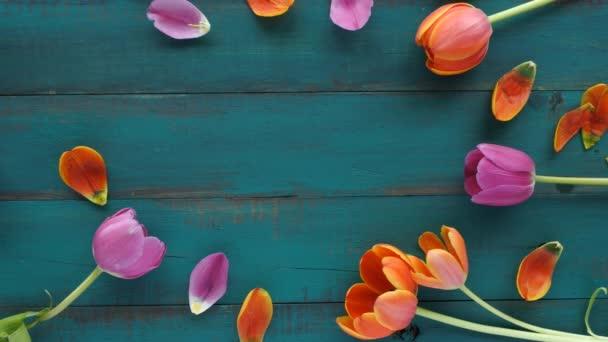 Tulipán květy kytice zachytil oválného tvaru 4k