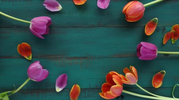 Tulip flowers bouquet assorted in oval shape for your text