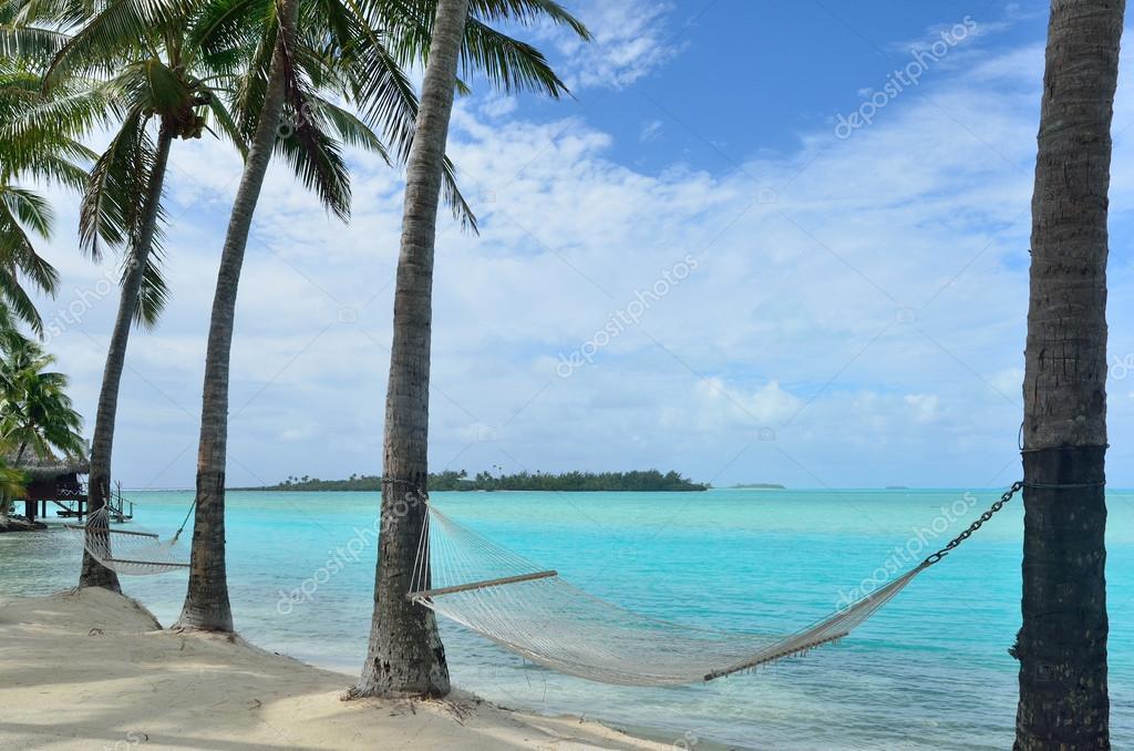 Hammock on Tropical Island