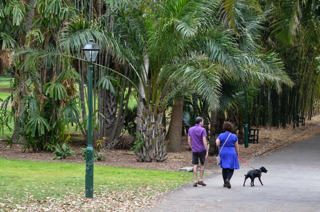 Brisbane City Botanic Gardens