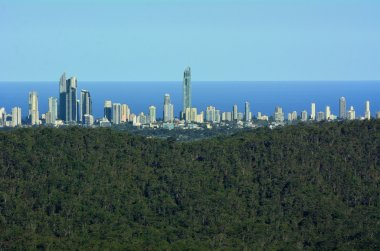 Surfers Paradise Skyline - Gold Coast Queensland Australia