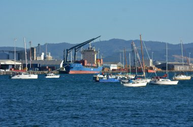 Port of Tauranga in New Zealand