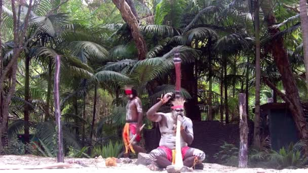 Yugambeh Aboriginal warriors men sing play and dance during Aboriginal culture show