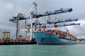Photo Cargo ship unloading containers in Ports of Auckland New Zealand