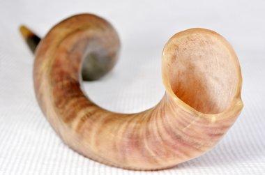 Selective focus of Shofar (horn)