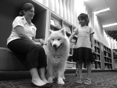 SPCA dog safety training