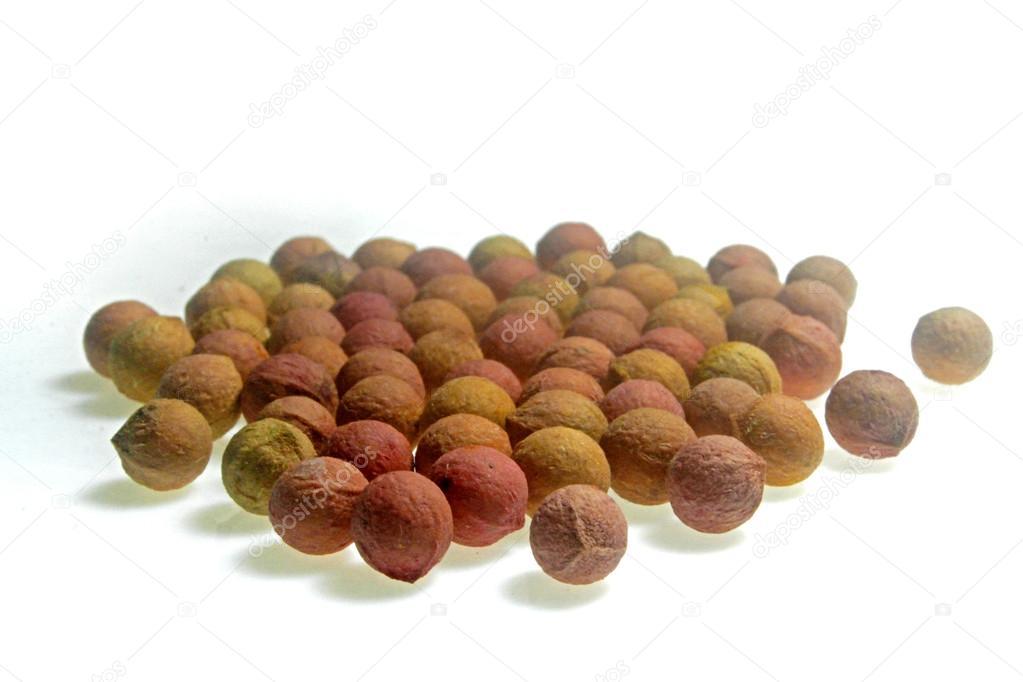 Seeds of sandalwood tree,  Santalum spicatum