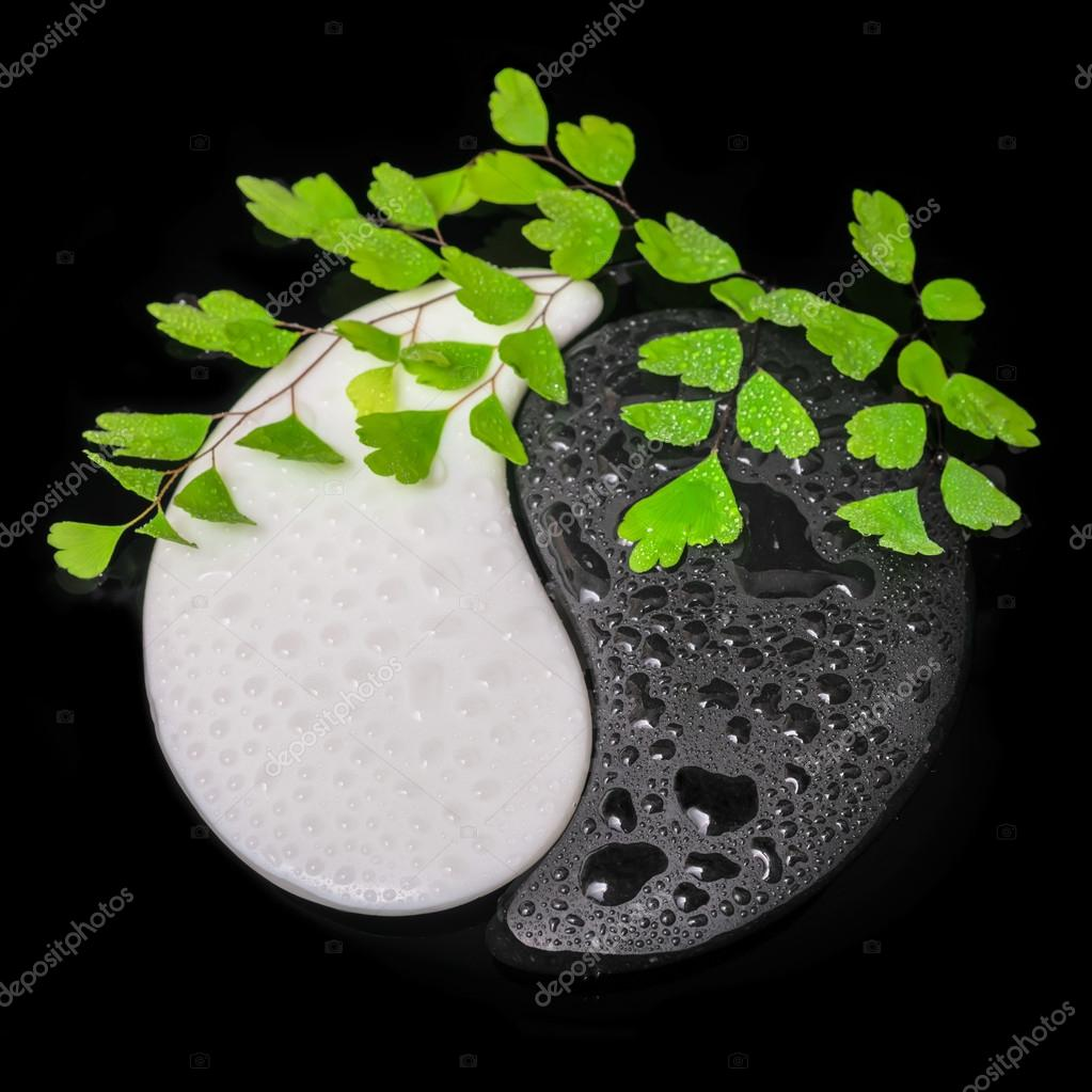symbol Yin-Yang of stone texture, the sign of the two elements w