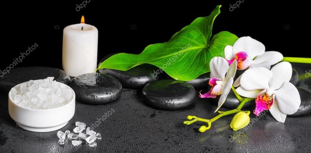 Arriere Plan Magnifique Spa De Blanche Fleur D Orchidee