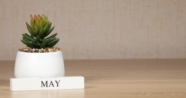 Important date or event on the calendar is May 8. Female hands move cubes with numbers.